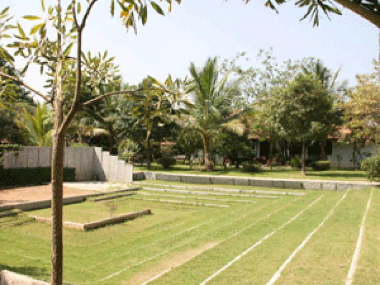 Ayurvedagram-amphi-theatre-300x225